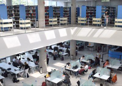 Sistema Bibliotecario